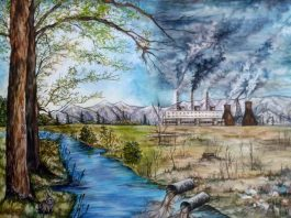 Effects of environmental pollution