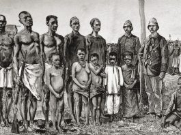 pygmy people-2