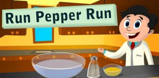 Pepper On The Run