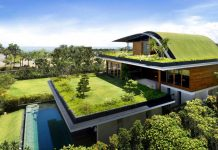 eco_friendly_sky_garden_home